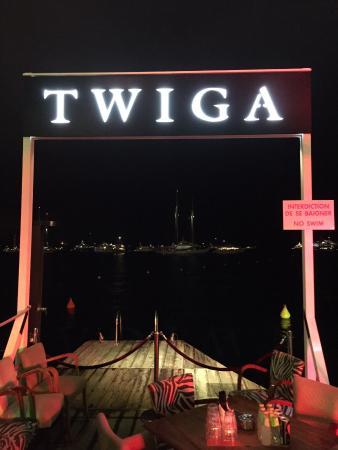 twiga-4